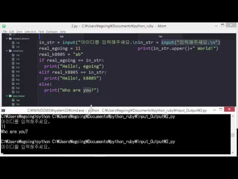 Python & Ruby - 입력과 출력 2 : 활용