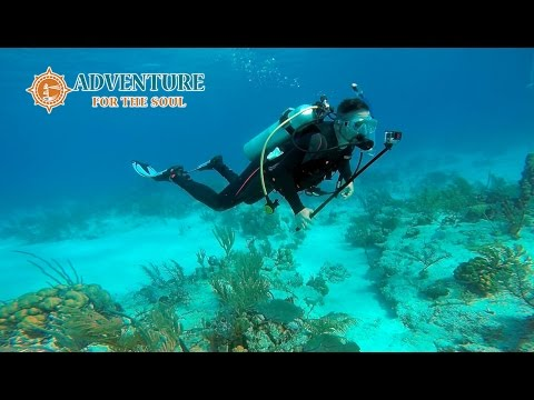 Scuba Diving The Ampitheater in Grand Turk