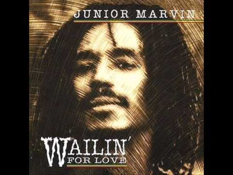 Junior Marvin - Life without you