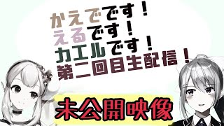 【🐸未公開映像】生配信直前会談【井戸端会議#2】