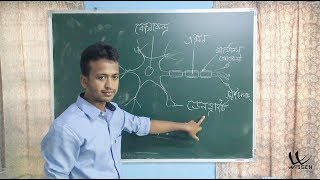 18_Class_10(X)_Science( Biology )_IN_Assamese_Medium_Lecture_IMG_2990