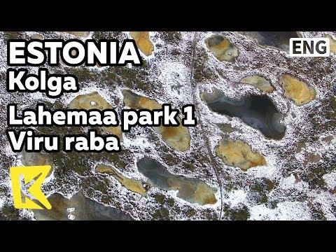 【K】Estonia Travel-Kolga[에스토니아 여행-콜가]라헤마 국립 1 공원 비루라바 습지대/Lahemaa park/Wetland/Lake/Viru Raba/Nature