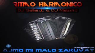 DJ Gallardo & DJ Maestro - Ritmo Harmonico (Radio Edit) 2012