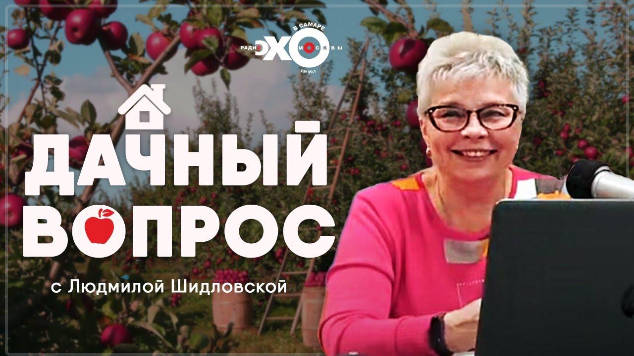 Дачный вопрос • 06.10.2021 // Тамара Александрова / Ведущая Людмила Шидловская