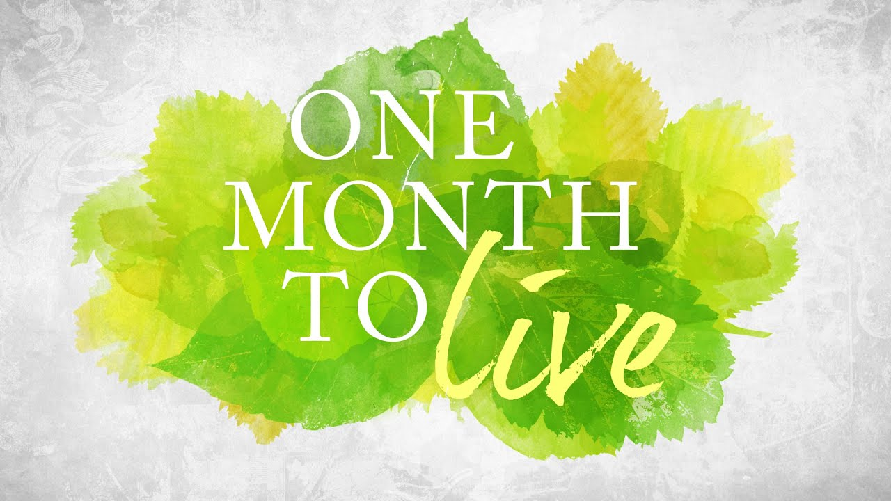 a month to live That's just what peter berkowitz did two weeks ago, when he built an 8-foot-long, 4½-foot-high wooden bedroom in the corner of his friends' living room in the sunset district neighborhood while the bay area's median rent for a one-bedroom apartment hovers around $3,670, the 25-year-old illustrator.