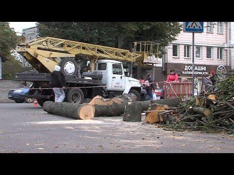 TVRivne1 / Рівне 1: У Рівному на перехресті вулиць Петра Могили та Соборної готуються встановити світлофор