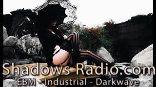 Harsh EBM - Electro Industrial - Darkwave - Synthpop Music Mix