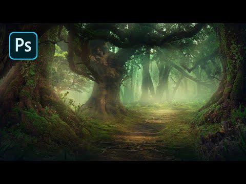Fantasy Forest Environment – Photoshop Speedart Timelapse