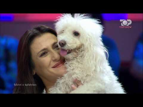 Top Show, 4 Tetor 2017, Pjesa 1 - Top Channel Albania - Talk Show