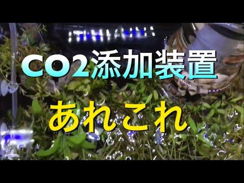 【アクアリウム 熱帯魚】CO2添加装置