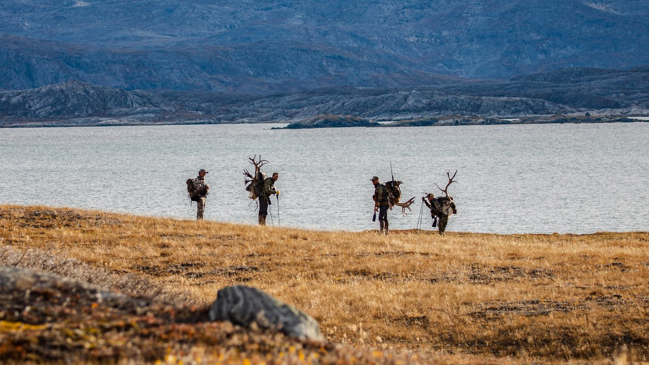 71° North - A Greenland Hunting Adventure