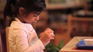 A Peek Inside a Montessori Classroom (Old branding)