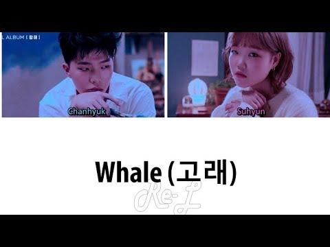 AKMU - Whale mp3 indir