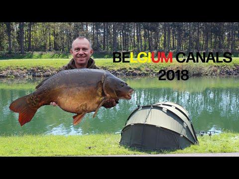 Carp Fishing - Belgium Canals III