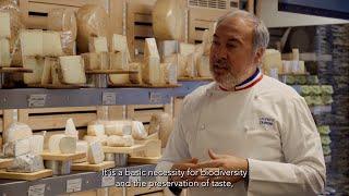 Teaser - Laurent Dubois - Cutting Cheese
