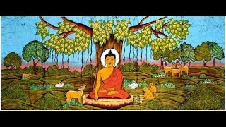 Video ANIMALS AND THE BUDDHA download MP3, 3GP, MP4, WEBM, AVI, FLV Desember 2017