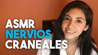 ASMR En Español - Examen De Nervios Craneales (Roleplay Susurrado)