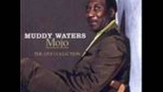 Watch Muddy Waters I Feel So Good video