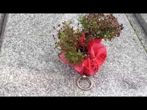 Profanadas siete sepulturas en el cementerio de A Valenzá