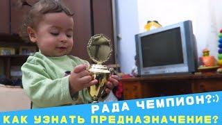 Бонус Раде 14 месяцев!! Как узнать предназначение маленького ребенка и с чего начать воспитание?