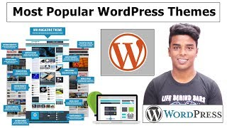 Top 3 Most Popular Premium WordPress Themes of All Time