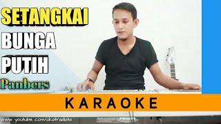Download SETANGKAI BUNGA PUTIH - PANBERS   KARAOKE LIRIK