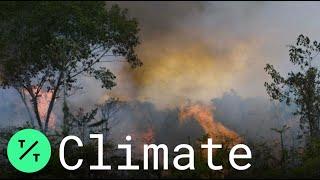 Brazil's Indigenous Women Protest Bolsonaro Amid Devastating Amazon Wildfires