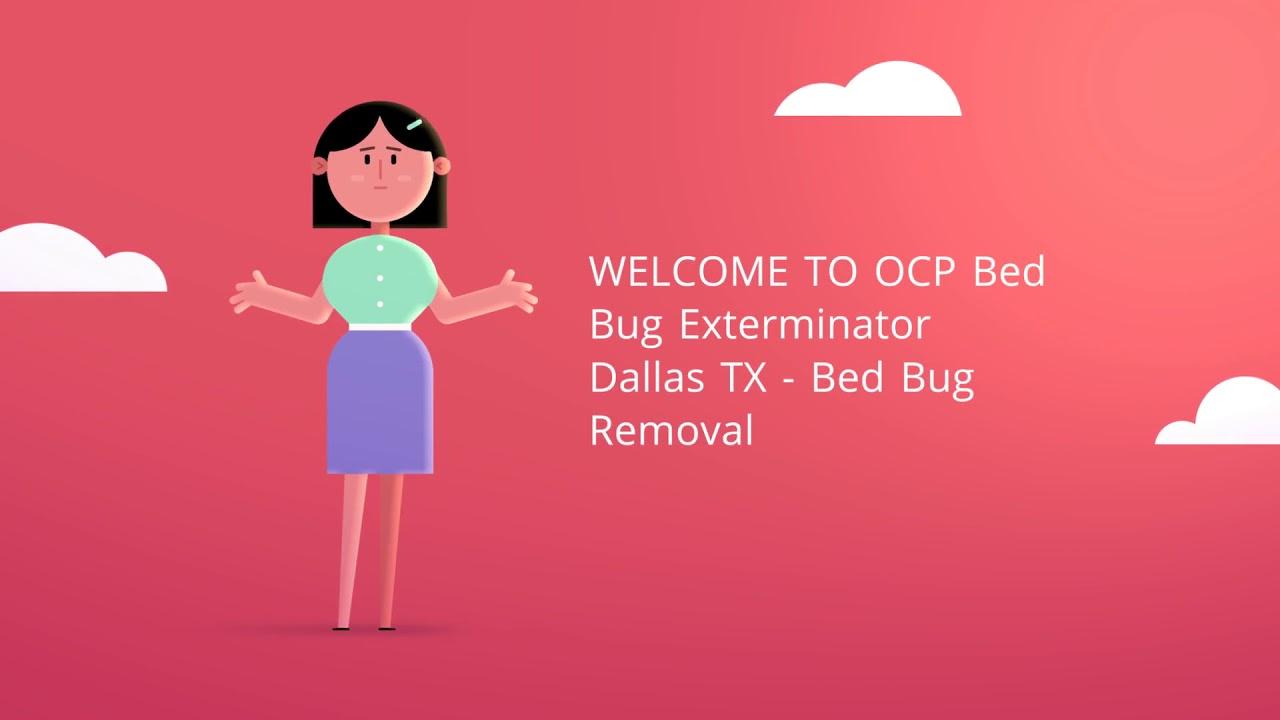 OCP Bed Bug Removal in Dallas, TX | 469-754-8297