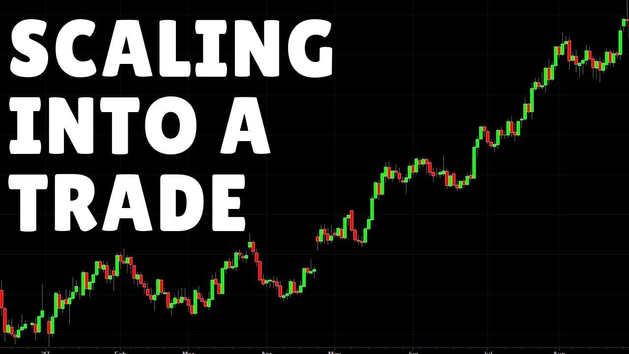 Торговля на форекс youtube курс евро на сегодня на бирже форекс