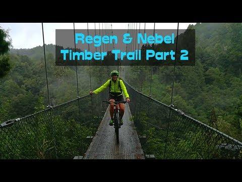 Regen und Nebel | Timber Trail NZ | MTBTravelGirl