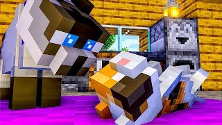 CAT LIFE FULL MOVIE - Episode 1 - Minecraft Animation