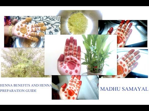 Henna Maruthani Benefits And Natural Mehandi Making Guide