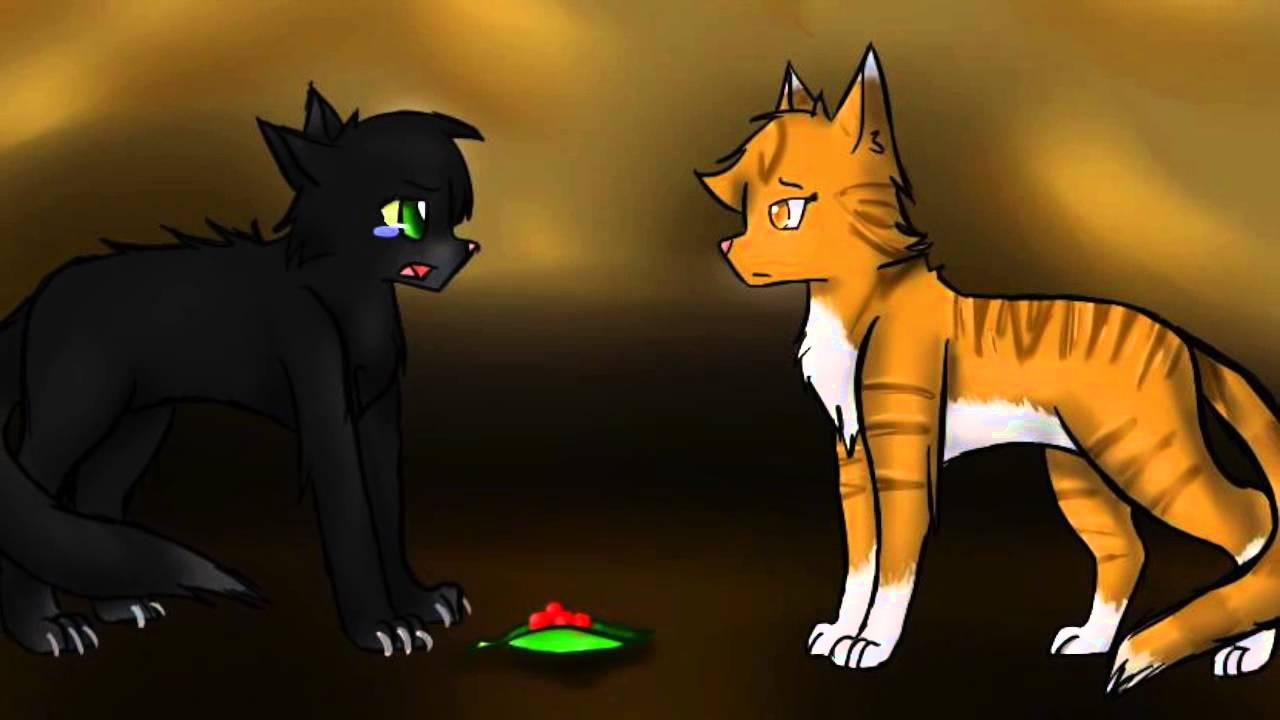 Коты воители поздравление