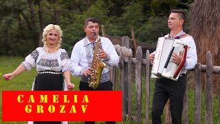 Camelia Grozav -  Invartita pe picior