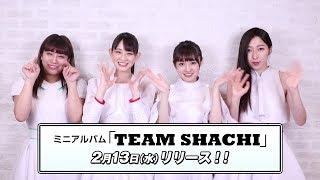 ミニアルバム「TEAM SHACHI」2月23日(水)リリース! TEAM SHACHIオフ...