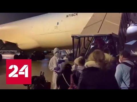 С лайнеров Diamond Princess и Westerdam эвакуируют пассажиров - Россия 24