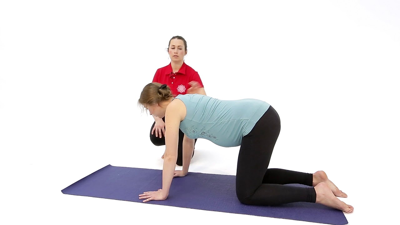 Йога для беременных в домашних условиях: 10 Простых асан, которые вы легко повторите + 5 Фактов о йоге для беременных Здоровый образ жизни Здоровье Йога