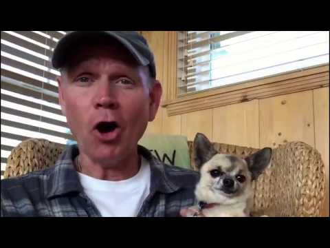 Download Youtube: How to relax with your dog
