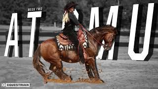 Georgia Equestrian vs. SMU Graphic