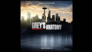 Grey's Anatomy Score - Mind Games (1308, Derek Scene)