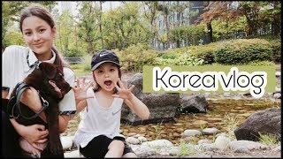 В Корее едят собак, наше мнение/ Семейный ужин/ KOREA/ VLOG/