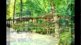 Piknik Yerleri İstanbul