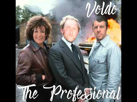 The Professional (Hey Marcel) by Voldo