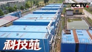 《科技苑》大铁箱子来养鱼 20180730 | CCTV农业