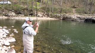 Trout Fishing West Virginia