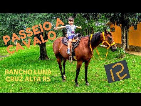 PASSEIO NO RANCHO LUNA - CAVALOS QUARTO DE MILHA -CRUZ ALTA RS