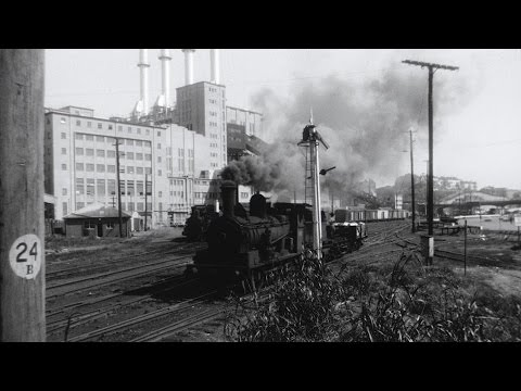Steam On The Harbour: Darling Harbour's Working Trains