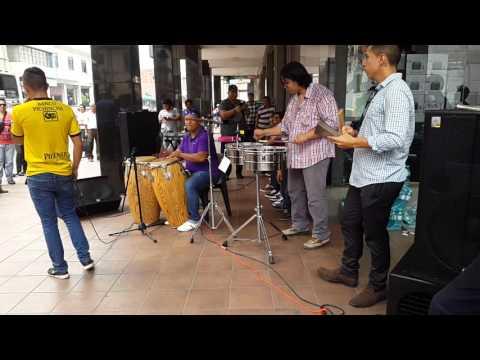 Musicos de guayaquil