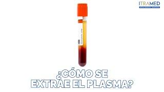 PLASMA RICO EN PLAQUETAS - Factores de Crecimiento - PRP - Dr Gonzalo Mora