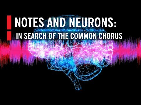 Notes and Neurons: In Search of the Common Chorus